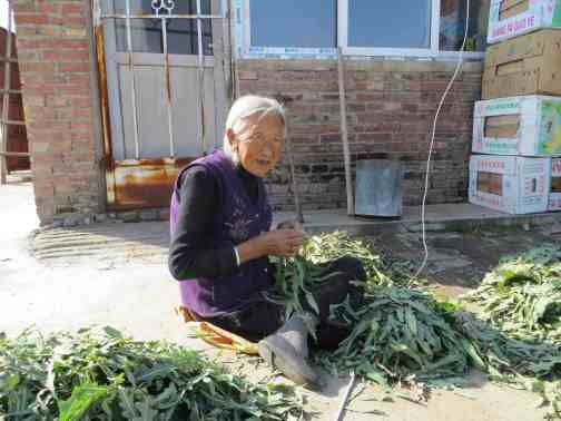 widow with veg