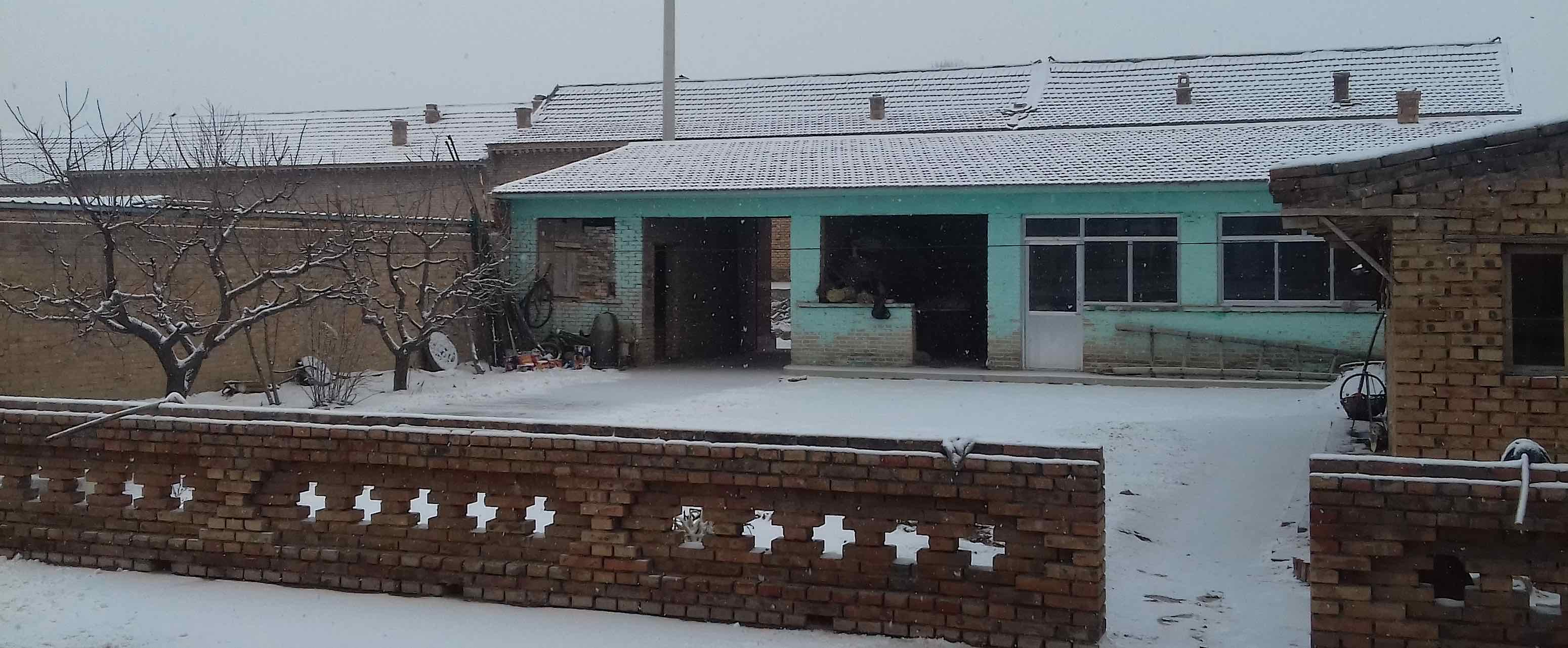 courtyard in snow