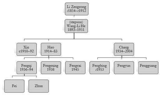 Wang jiapu