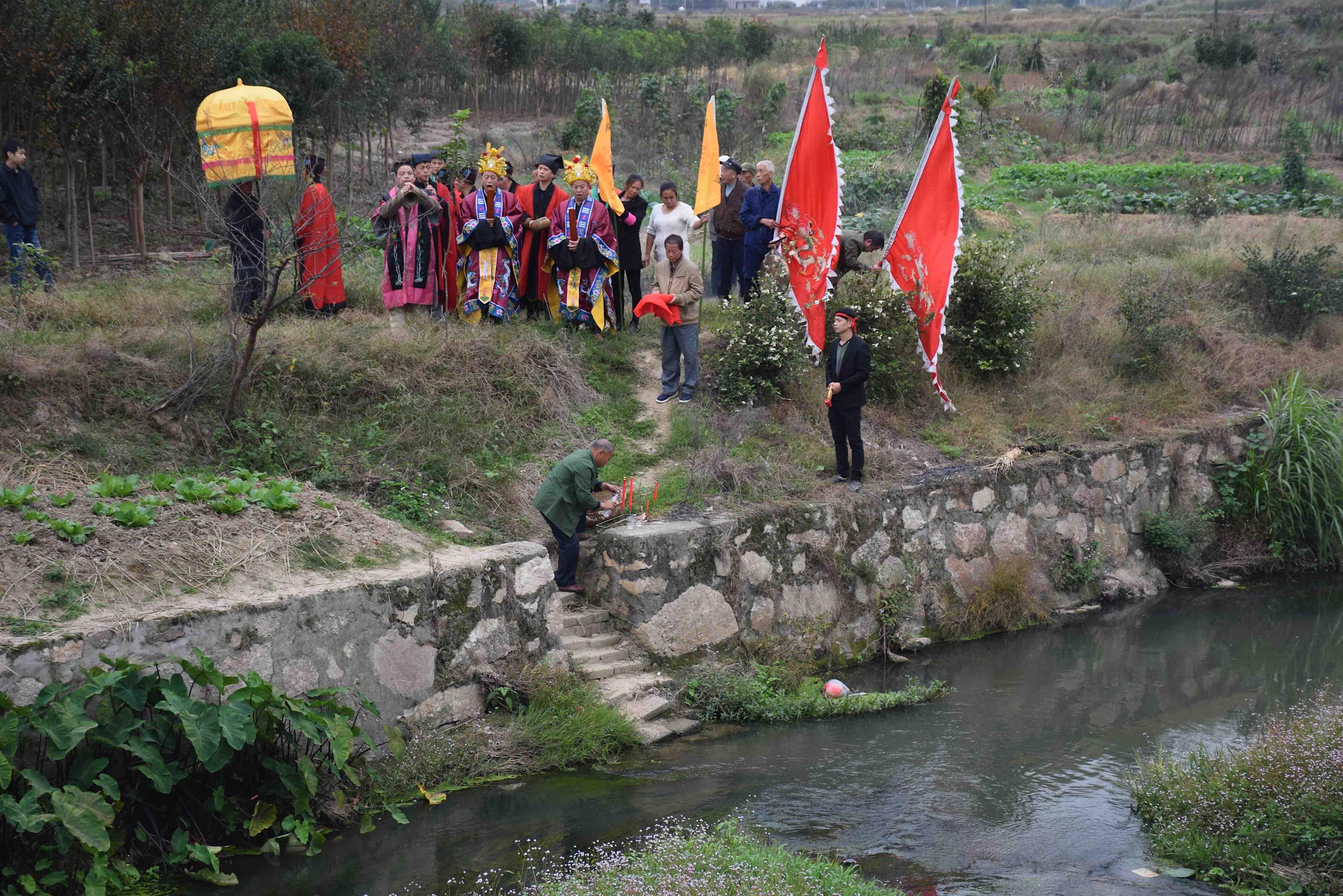 Hunan Fava
